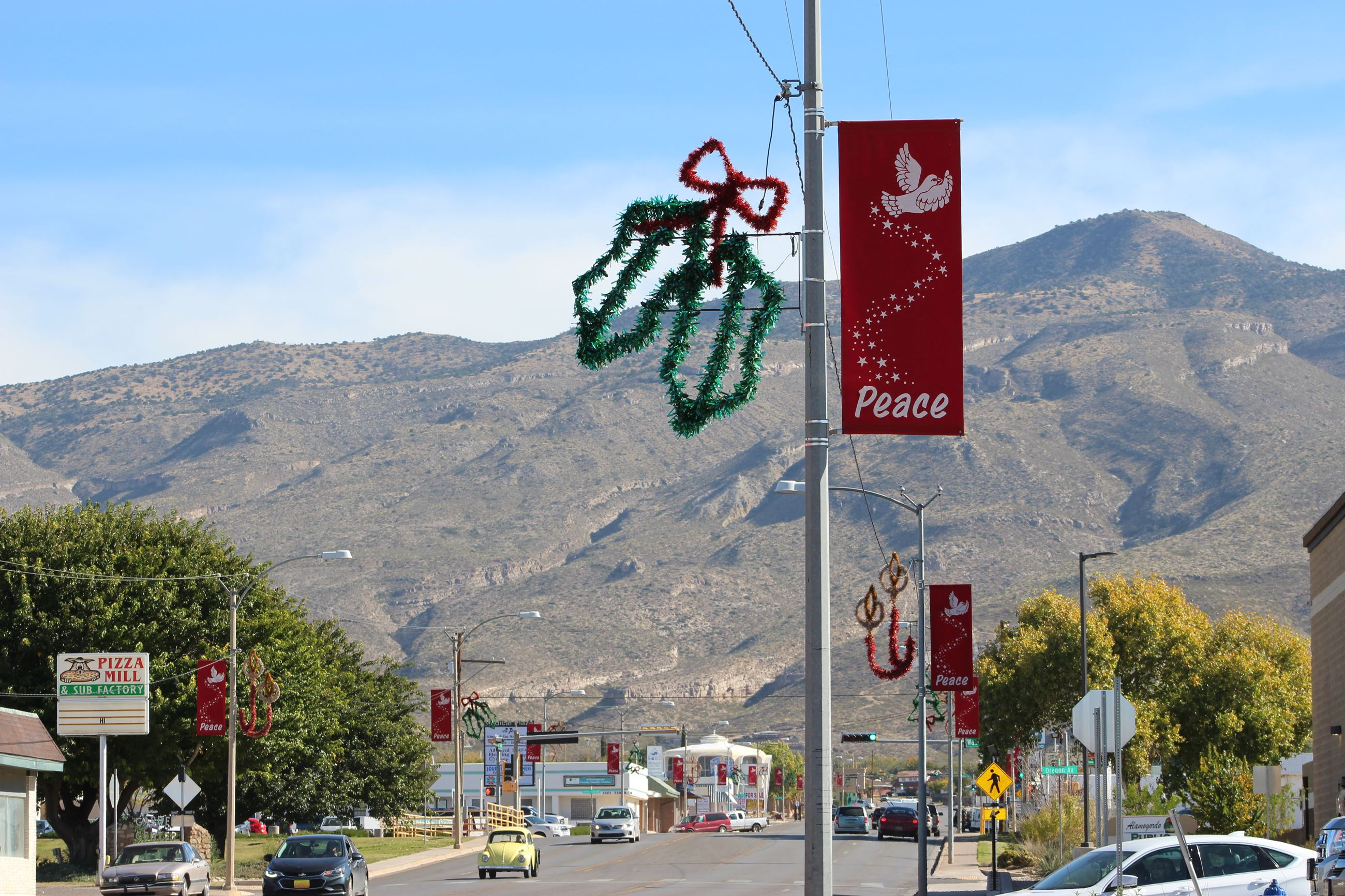 Christmas Light Pole Decorations & Banner