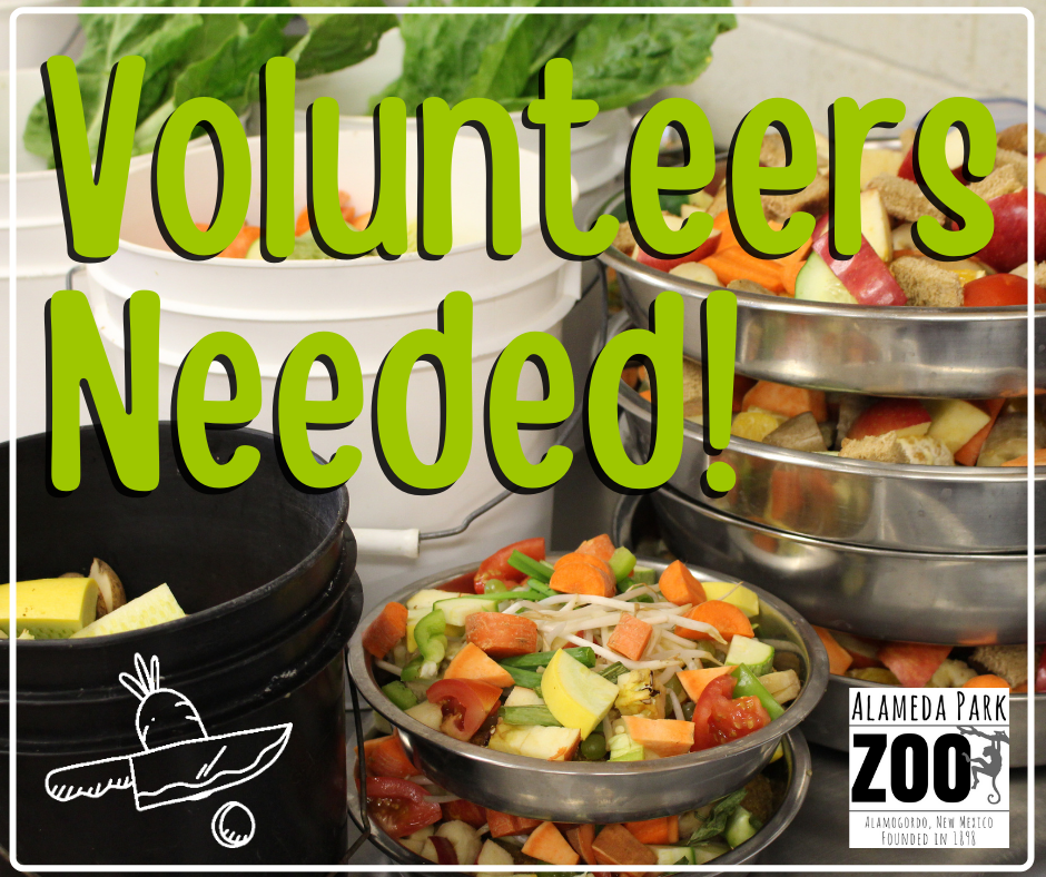 Volunteers Needed Zoo